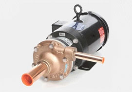 Hy Save pumps